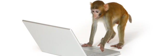 Survey Monkey Audience Marketing review
