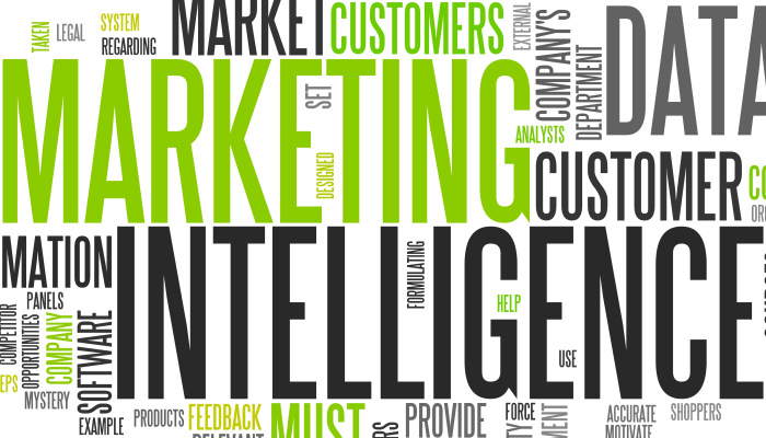 Start ups Marketing intelligence important large image